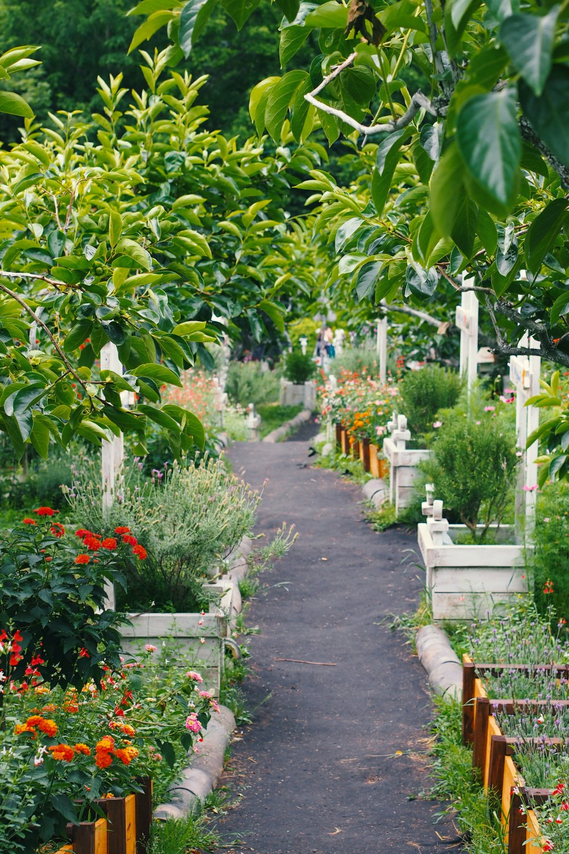 Odlingsram för enklare trädgårdsplanering